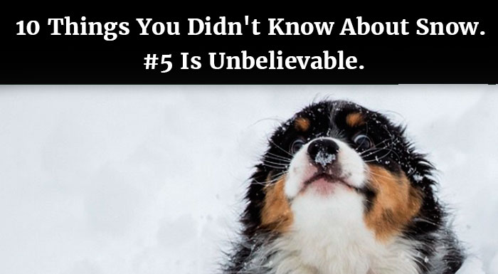10 Things I Know About You: 10 Things You Didn't Know About Snow. #5 Is Unbelievable